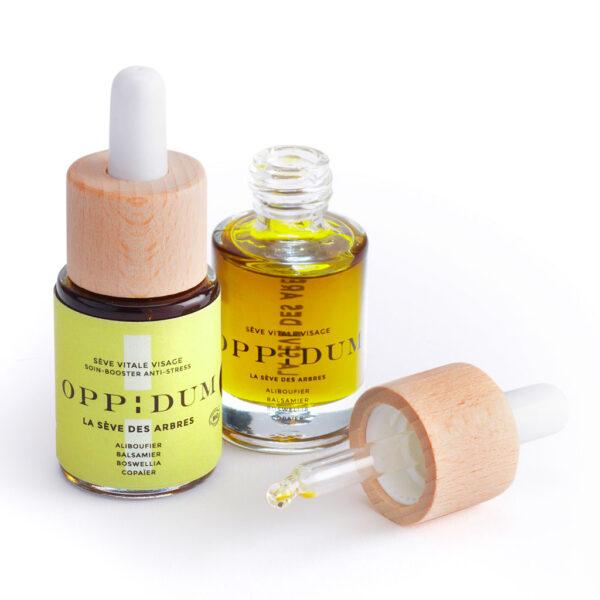 Oppidum Siero viso 1